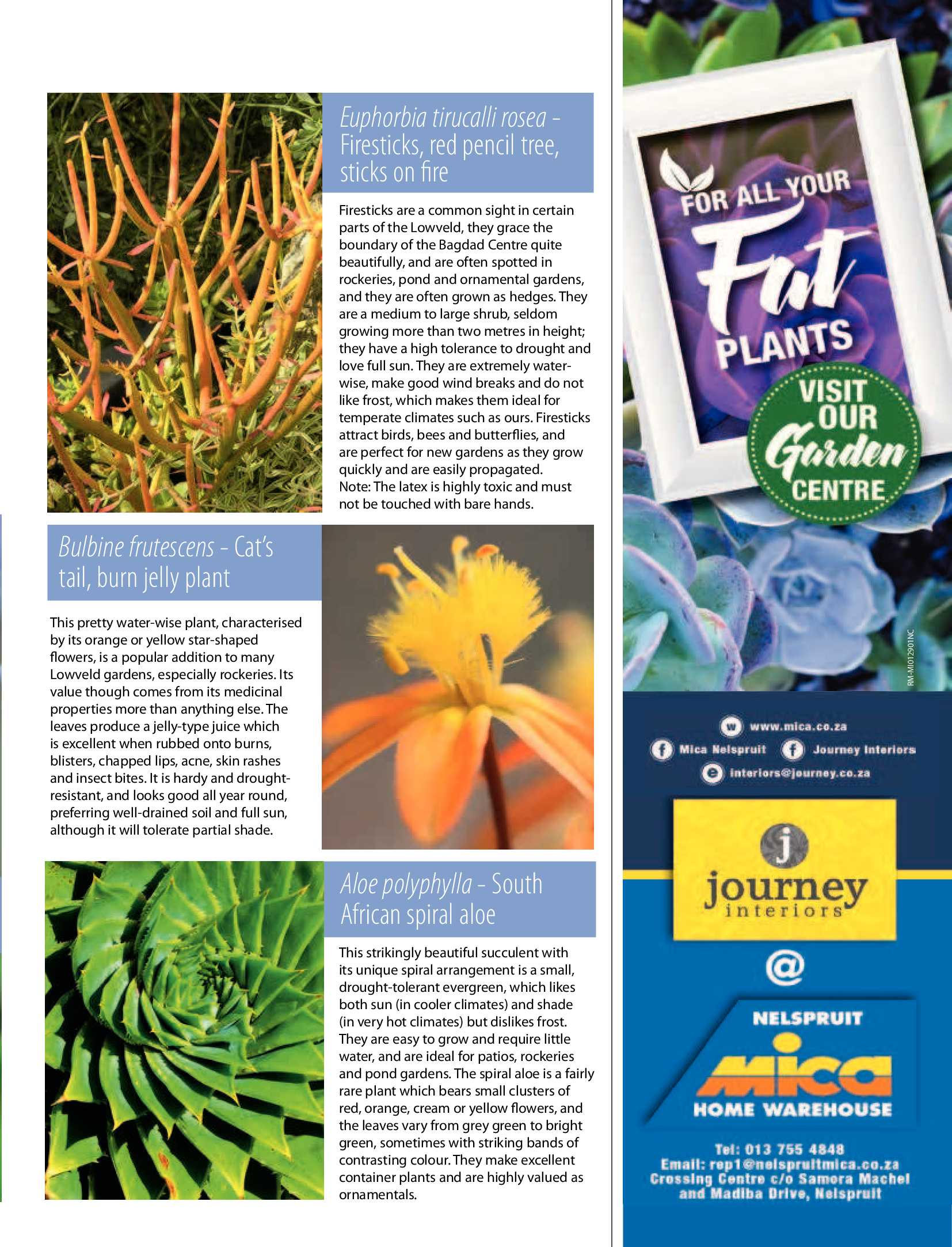 january-2018-epapers-page-43